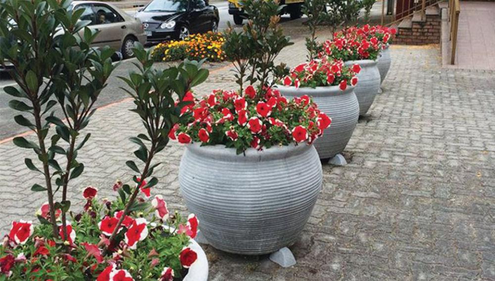 Knysna In Bloom Pots Project